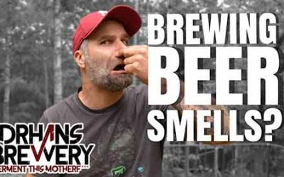 Does Brewing Your Own Beer Smell?