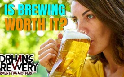 Is Homebrewing Worth it in 2019?